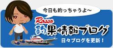 Rosso釣果情報ブログ